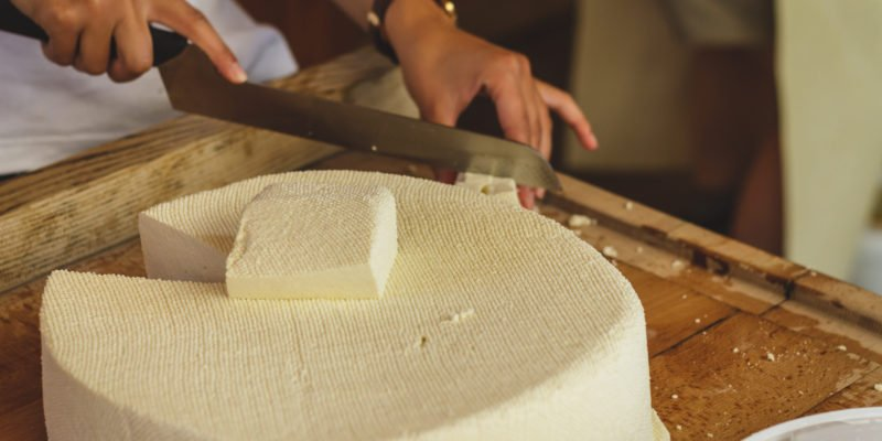 Best Cheese Making Kit